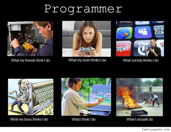 what_i_think_i_do_programmer-710x532
